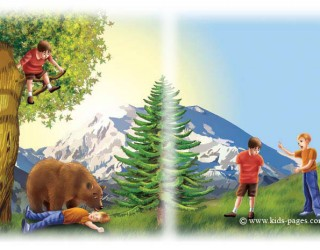 bear-and-travellers